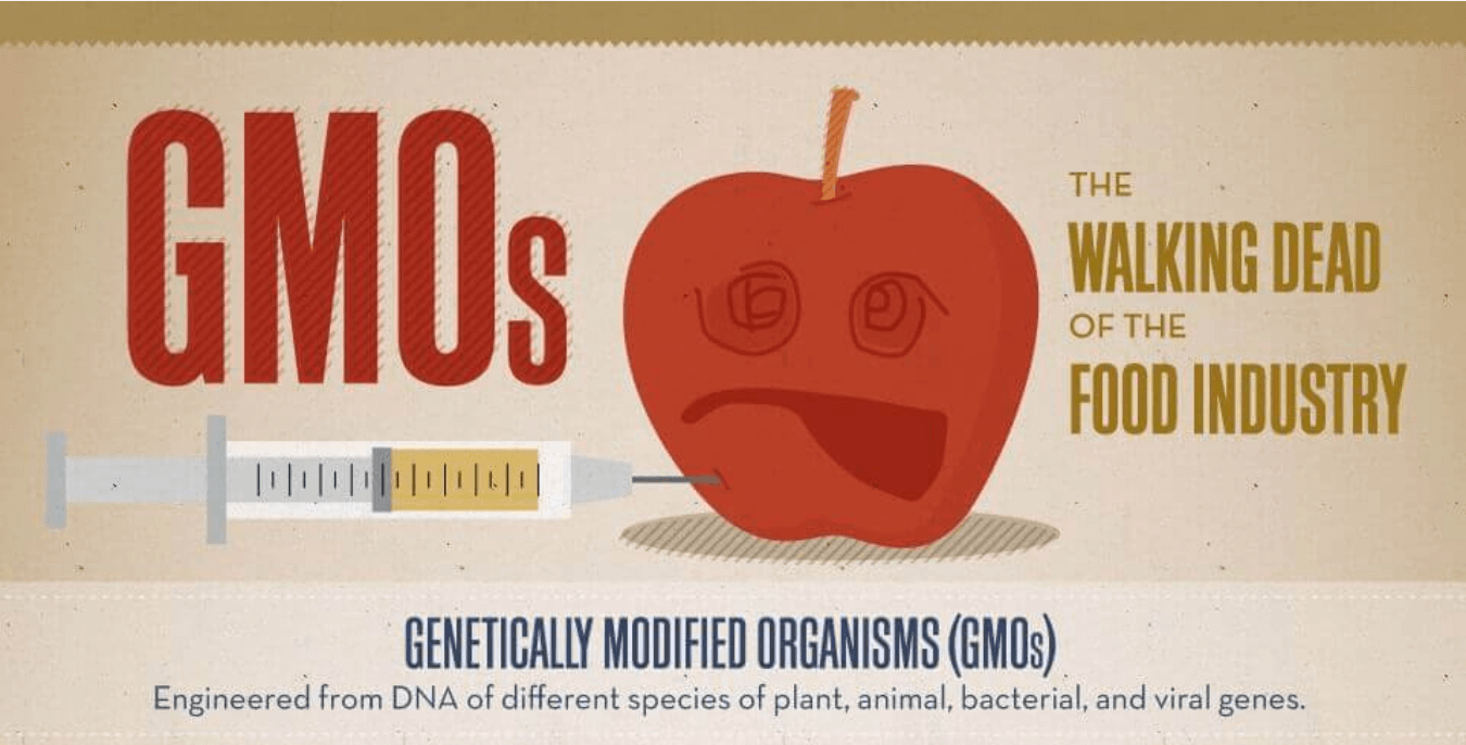 Genetically Modified Organisms – DNA Engineering