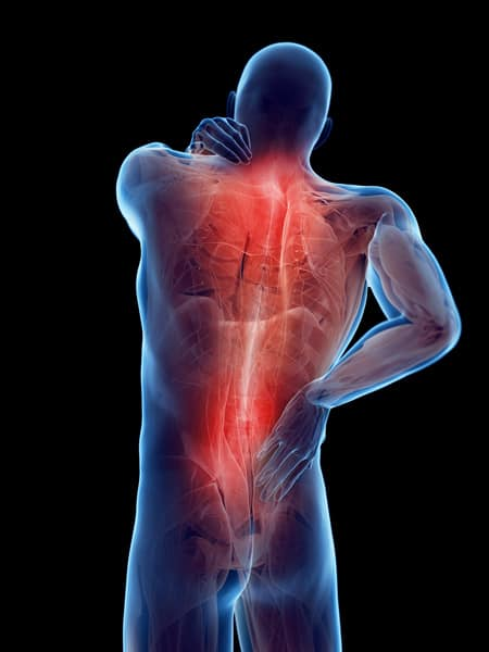 muscle pain chiropractor