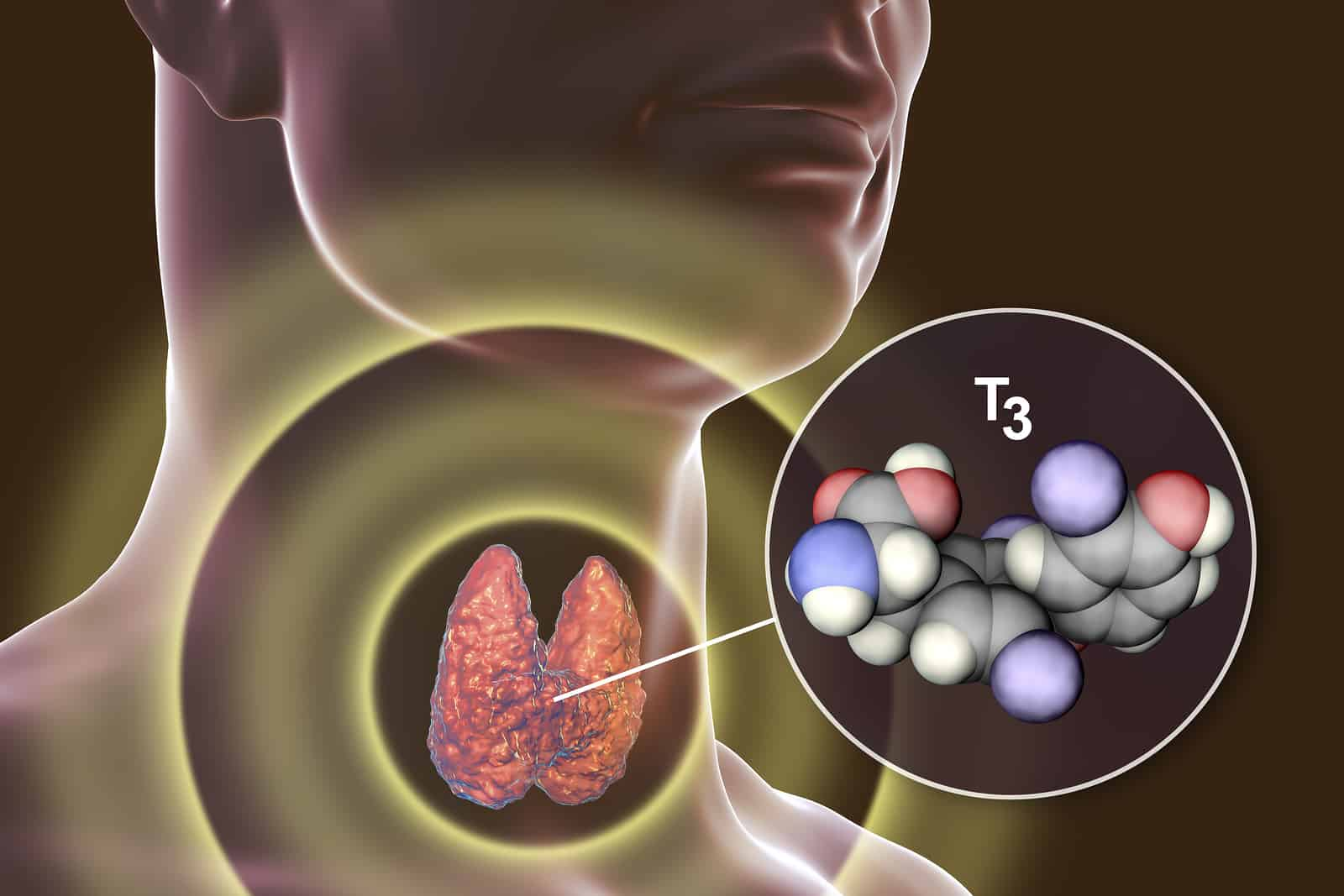 How we identify and manage thyroid disorders