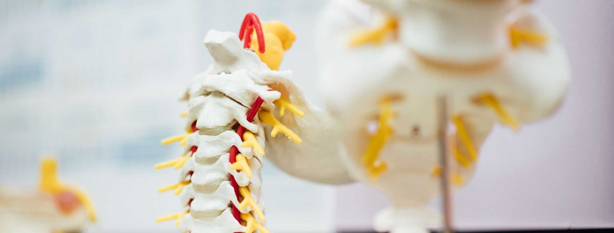 3 Things To Keep In Mind when Choosing a Chiropractor